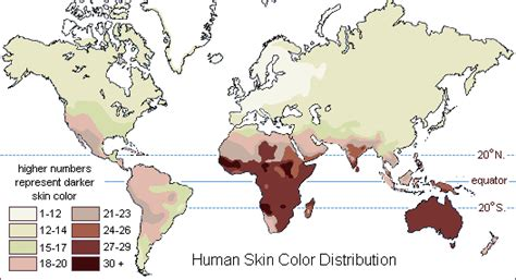 skin color map human biological adaptability skin color as an adaptation