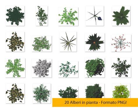 piante in 20 alberi in pianta png 3dita digital visual studio
