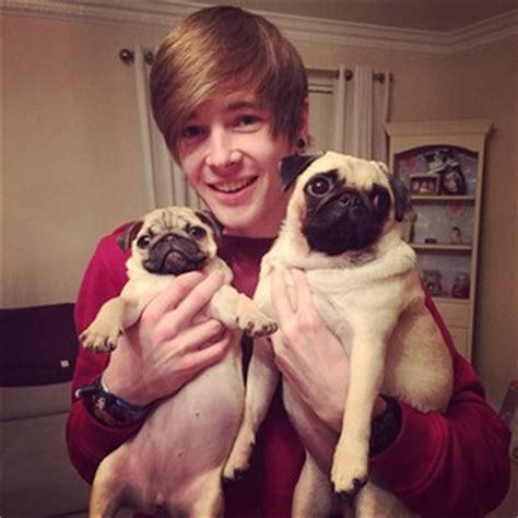 dantdm pugs instagram photo by dantdm pug