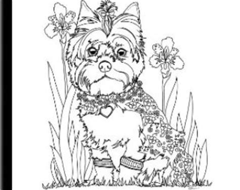 yorkie coloring pages yorkie coloring pages murderthestout