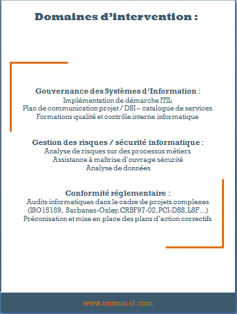 Cabinet Conseil Système D Information by Index Immun It