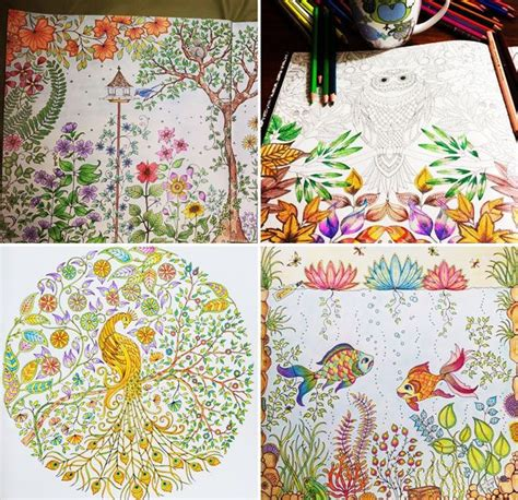secret garden coloring book finished pages the 78 best images about johanna basford enchanted forest