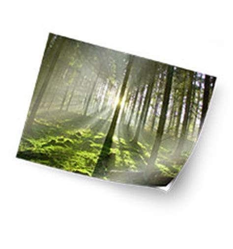 foto matt bestellen foto auf klebefolie 70 215 50 cm matt bei pixum bestellen