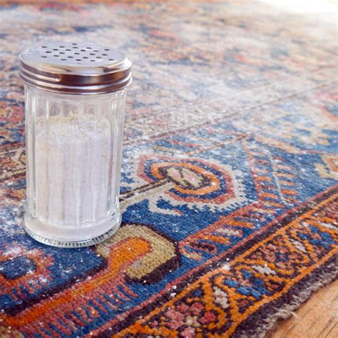 Diy Rug Cleaner by Vacuum Your Carpet And Enjoy Remove Tough Stains With