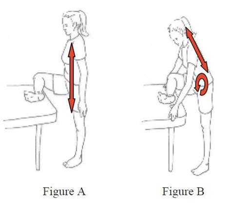 piriformis diagram 17 images about piriformis syndrooma on back