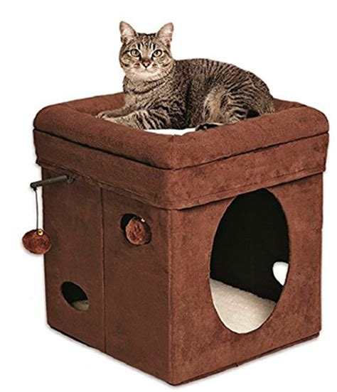 cool cat furniture fancy and cool cat beds sparklecat