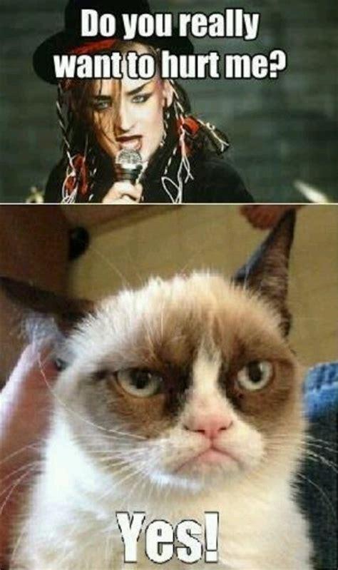 Tardar Sauce Meme - tardar sauce boy george grumpycat meme grumpy cat