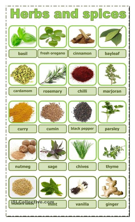 8 Must Herbs And Spices by Herbs Spices And Worksheets On