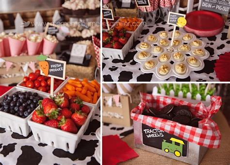 farm themed birthday food 45 best images about farm barnyard themed party on