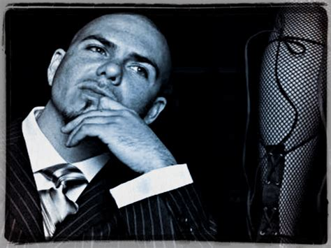 how to your pitbull to be a service pitbull pitbull rapper wallpaper 32975481 fanpop