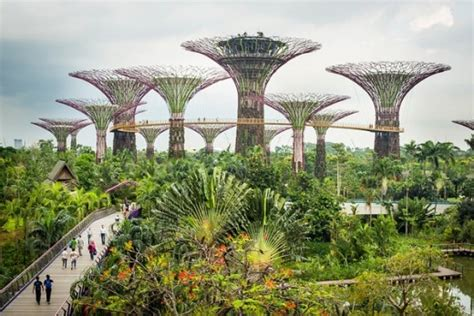 agritecture  vertical farming  history  present