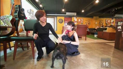 cafe house music pet lover by jerhigh ส ขใจ music house cafe youtube