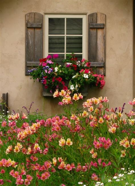 gardening window boxes colorful flower box garden window boxes