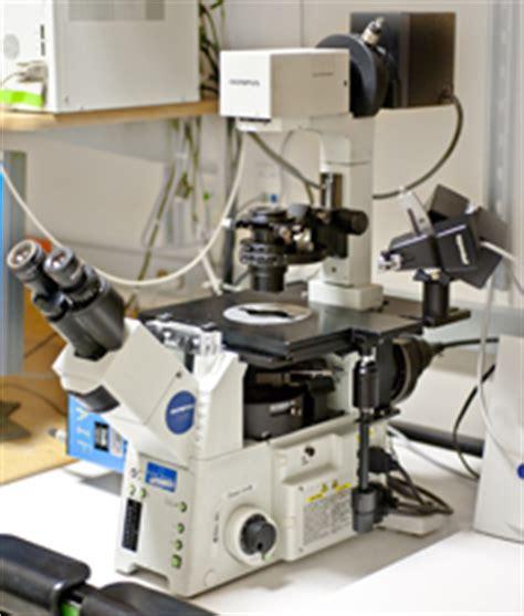 digital station #2 | analytical imaging facility | albert