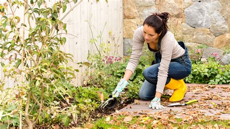 the backyard gardener how to prepare your garden for winter today com