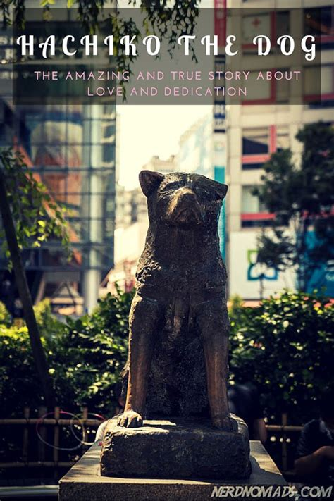The Amazing And True Story Of Hachiko The Dog Hachiko Movie Summary