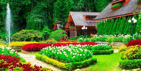 tips  decorating  garden  grass