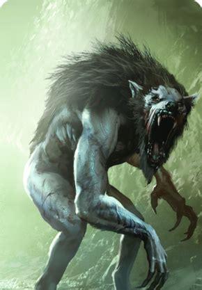 Loup Garou loup garou carte de gwynt l officiel sorceleur wiki