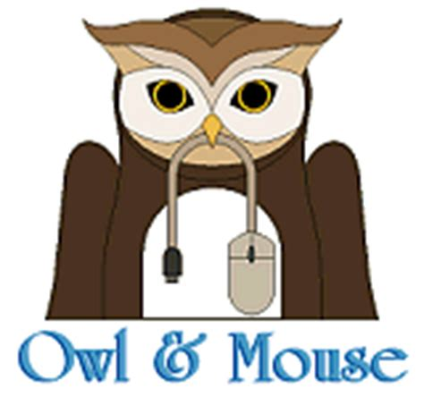 Us Map Quiz Owl And Mouse