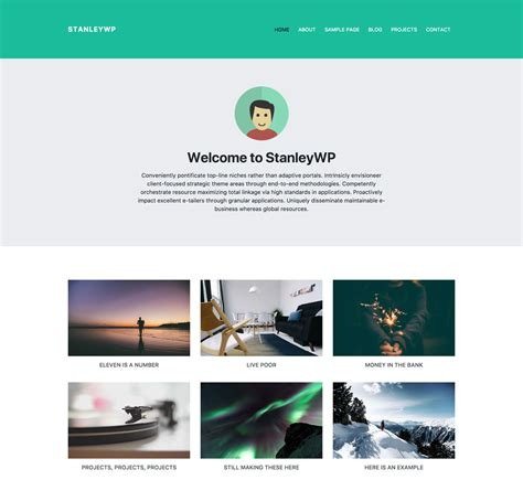 theme wordpress with bootstrap internet marketing wordpress development brag interactive