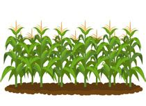 free agriculture clipart clip art pictures graphics