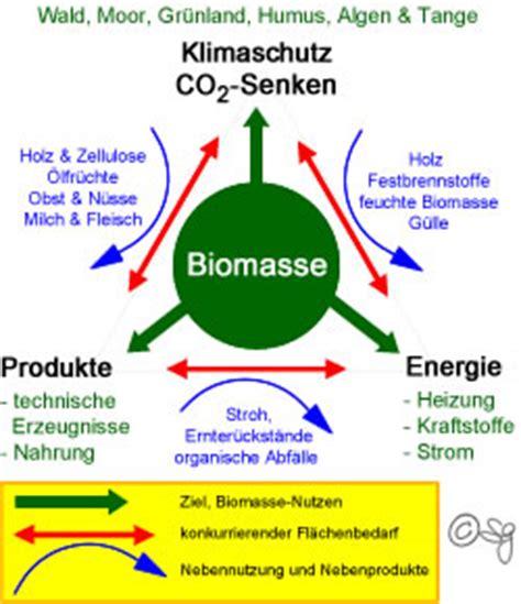bioethanol vor und nachteile energiepflanzen co2 bilanz und nachhaltigkeit