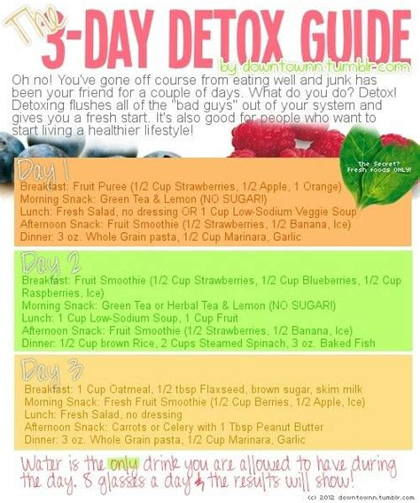 Dr Oz Clean Detox Menu by 3 Day Detox Health Fitness