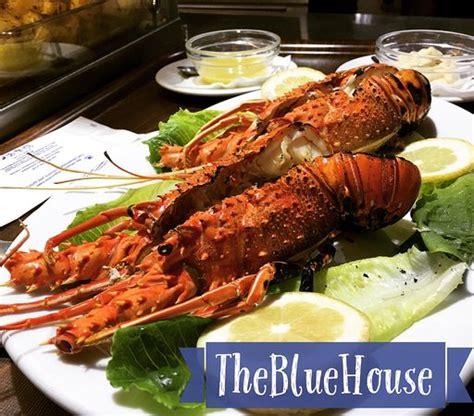 blue house restaurant vue de la terrasse bild fr 229 n blue house restaurant loutro tripadvisor