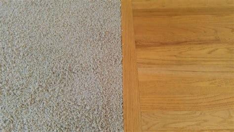 carpet  hard floors   easier  maintain