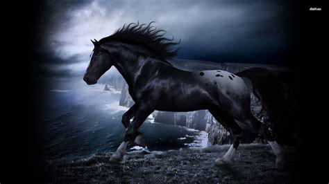 wallpaper hd 1920x1080 horses black horse wallpapers wallpaper cave
