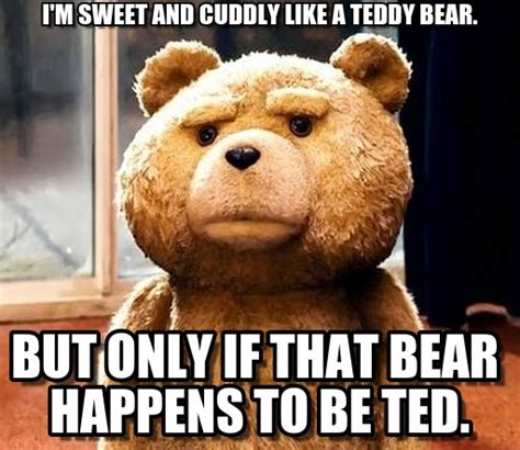 Teddy Meme - cuddly memes image memes at relatably com