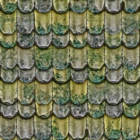 Moos Entfernen Pflaster 2319 by A Leaf Roof Texture Www Myfreetextures Free