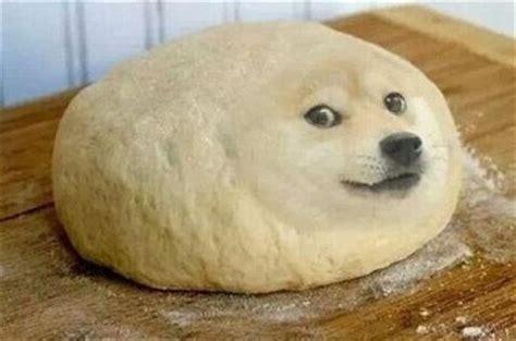how to make dogs like you 柴犬doge微信表情图片大全