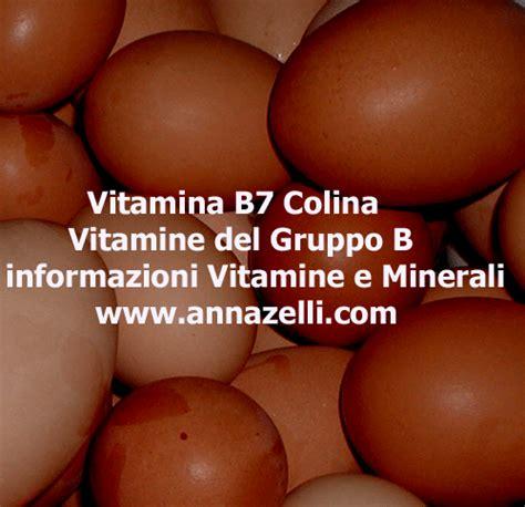 colina alimenti vitamina b7 colina vitamina gruppo b alimenti e vitamina