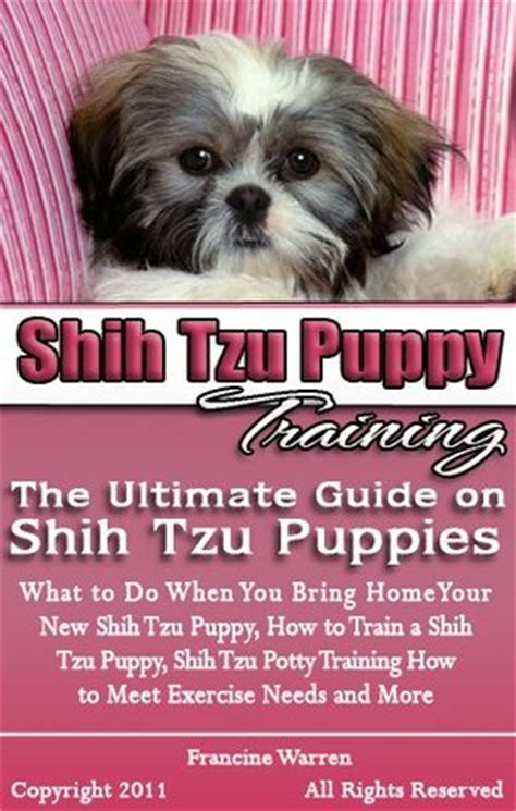 how to potty a shih tzu puppy shih tzu puppy the ultimate guide on shih tzu puppies what to do when you