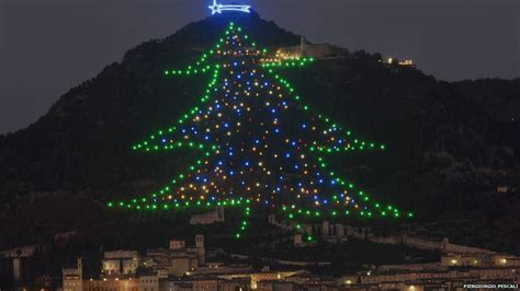 where is the biggest chistmas tree in the whole world news your week in pictures