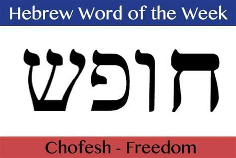 hebrew word for comfort freedom in hebrew writing pictures to pin on pinterest