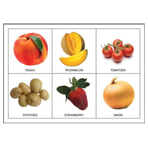 vegetables n fruits fruit n vegetable picture bingo printable box n dice