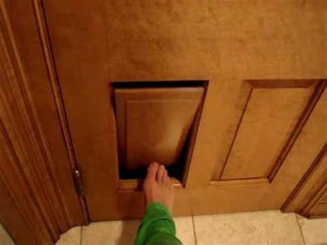 Clever Cat Litter Box Ragdoll Cat Door In A 6 Panel Door Cat Doors For Interior Doors