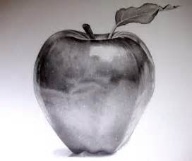 pencil drawing apple drawing art library