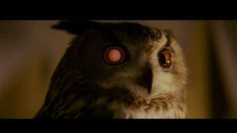 owl blade runner   climate