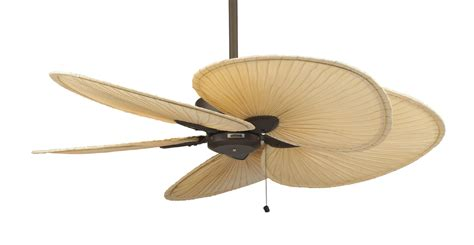 ceiling fan with fans as blades leaf blade ceiling fans lighting and ceiling fans