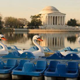 pedal boating in dc tidal basin boathouse swan boat and pedal boat rentals