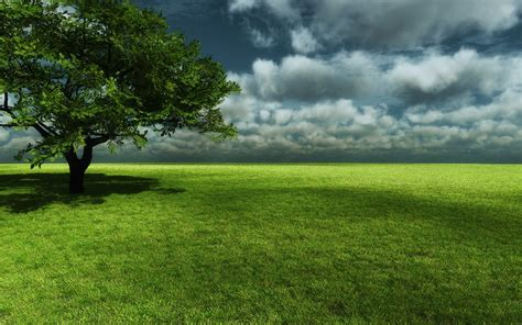 nature background android  wallpaper walldiskpaper