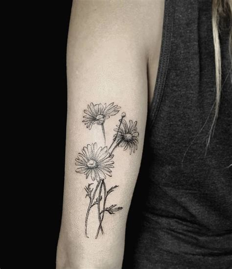 daisy flower tattoo designs 25 best ideas about daisies on