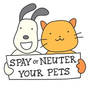 cost of spaying a spay neuter