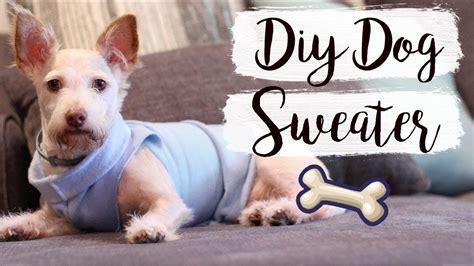 easy diy dog sweater  sew pet diys youtube