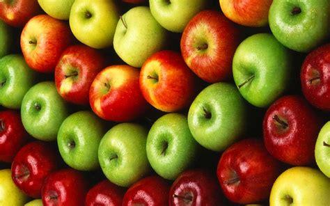 alimenti con poche calorie alimenti con poche calorie 15 alimenti poco calorici