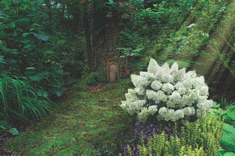 Landscape Pictures With Hydrangeas Landscaping With Hydrangeas Hgtv