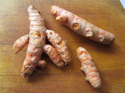 fruit kvass fruit kvass with turmeric for your health farmer s